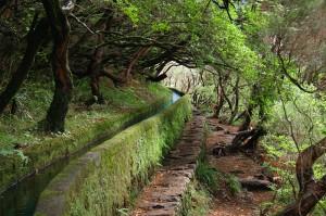 Levadas e Veredas da ilha da Madeira