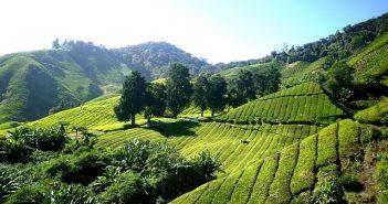 Viagens à Malásia - Turismo de aventura