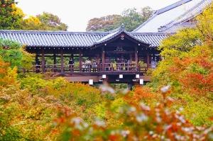 Circuito na Coreia do Sul e Japão