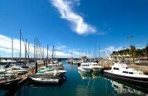 Melhor época para visitar a Madeira
